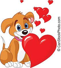 Puppy hält ein rotes Herz in ihrer M