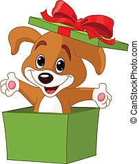 Puppy springt aus einer Kiste.