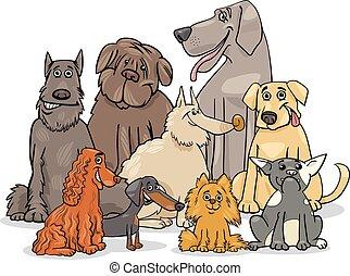 purebred, gruppe, hund, charaktere