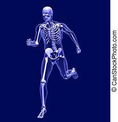 Röntgenmann läuft.