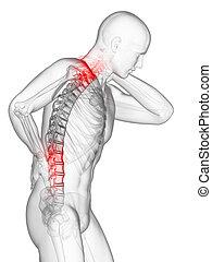 Rücken- und Nackenschmerzen