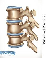 Rückenstruktur. Menschliches Skelett, Medizin. 3-D-Vektor-Icon