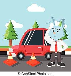 Rabbit-Auto wird überfahren.