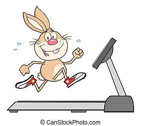 Rabbit Cartoon Charakter läuft.