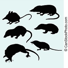 ratte, silhouette