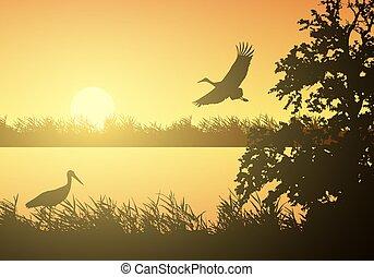 Realistische Illustration der nassen Landschaft mit Fluss oder See, Wasseroberfläche und Vögel. Storch fliegt unter dem orangen Morgen Himmel mit steigender Sonne, Vektor