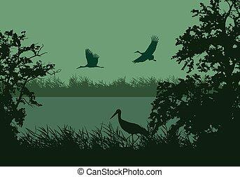 Realistische Illustration der nassen Landschaft mit Fluss oder See, Wasseroberfläche und Vögel. Storch fliegt unter grünem Himmel, Vektor