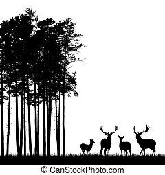 Realistische schwarze Illustration von aufrechter Hirschherde mit Geweih, Gras und Hochwald. Isoliert auf weißem Hintergrund, mit Raum für Text, Vektor