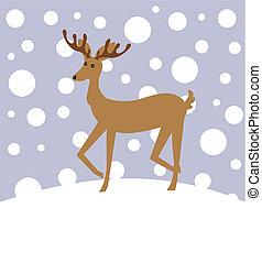 Reindeer im Winter