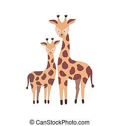reizend, familie, savanne, freigestellt, sprössling, kindisch, pflanzenfressend, hintergrund., weißes kalb, baby., wohnung, elternteil, afrikanisch, animals., giraffe, kind, karikatur, illustration., vektor, mutter, wild, oder