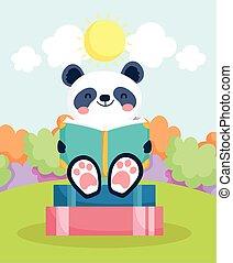 reizend, lesend buch, panda