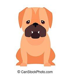 reizend, wohnung, pug hund, vektor, karikatur, ikone