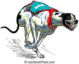 Rennhund Greyhound.