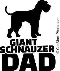 Riesen-Schnauzer-Dad.