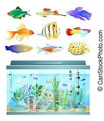 Riesiges Aquarium und verschiedene Fische setzen bunte Karte.