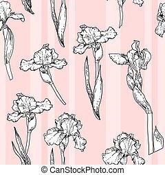 Rosa Irismuster