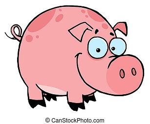 rosa, lächeln glücklich, flecke, schwein