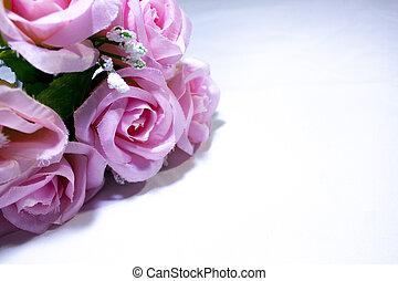 Rosa Rosen auf weißem Hintergrund. Valentinstag