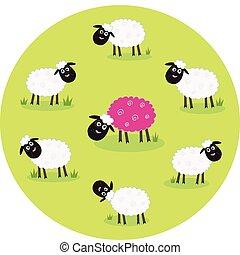 Rosa und weißes Schaf