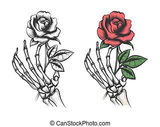 rose, blume, skelett, menschliche hand