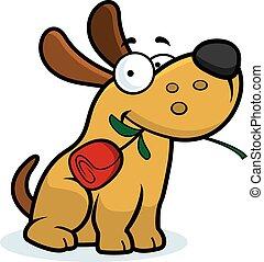 rose, karikatur, hund