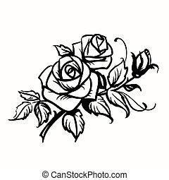 Rosen. Schwarze Zeichnung auf weißem Hintergrund