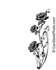Rosen Silhouette