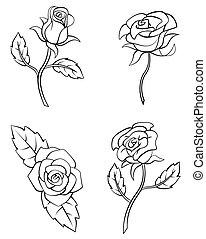 Rosenblütensammlung.