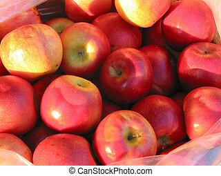 Rote Äpfel auf dem Bauernmarkt