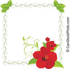 Rote Blumen im Dekorationsrahmen