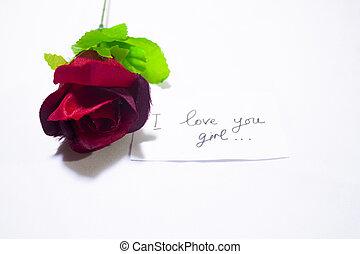 Rote Rose mit Grußkarte. Fotoshooting Valentinstag