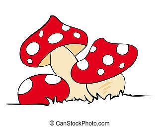 rotes , gift, mushrooms.