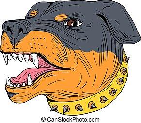 Rottweiler bewachen Hundekopf aggressive Zeichnung.
