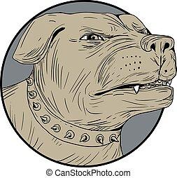Rottweiler bewachen Hundekopf wütend Zeichnung.
