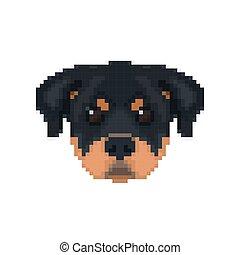 Rottweiler Kopf im Pixel-Kunststil.