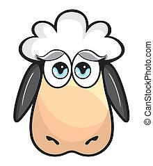 Süße Schafe