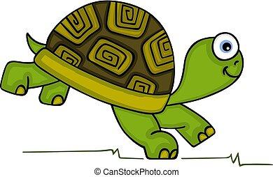 Süße Schildkröte läuft.