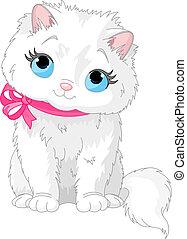 Süße weiße Katze