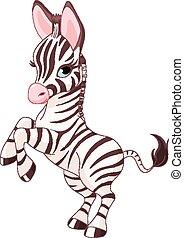 Süßer Baby Zebra.