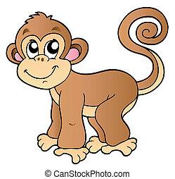 Süßer kleiner Affe