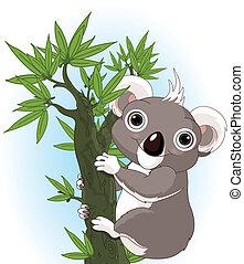 Süßer Koala auf einem Baum.