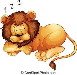Süßer Löwe schläft allein.