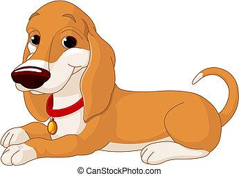 Süßer lügender Hund