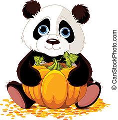 Süßer Panda.