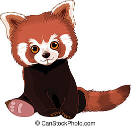 Süßer roter Panda.