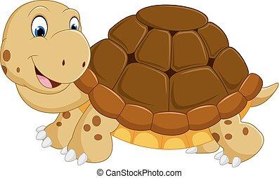 Süßer Schildkröten-Cartoon.