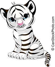 Süßer weißer Tigerjunge