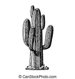 Saguaro arborescent tree-like kactus ink Vektor