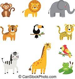sammlung, afrikanisch, karikatur, kindisch, reizend, animals.