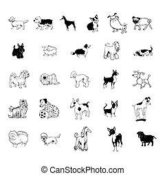 sammlung, hund, clipart